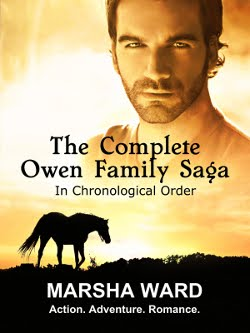 Get all five OWEN FAMILY SAGA novels in ebook or paperback!