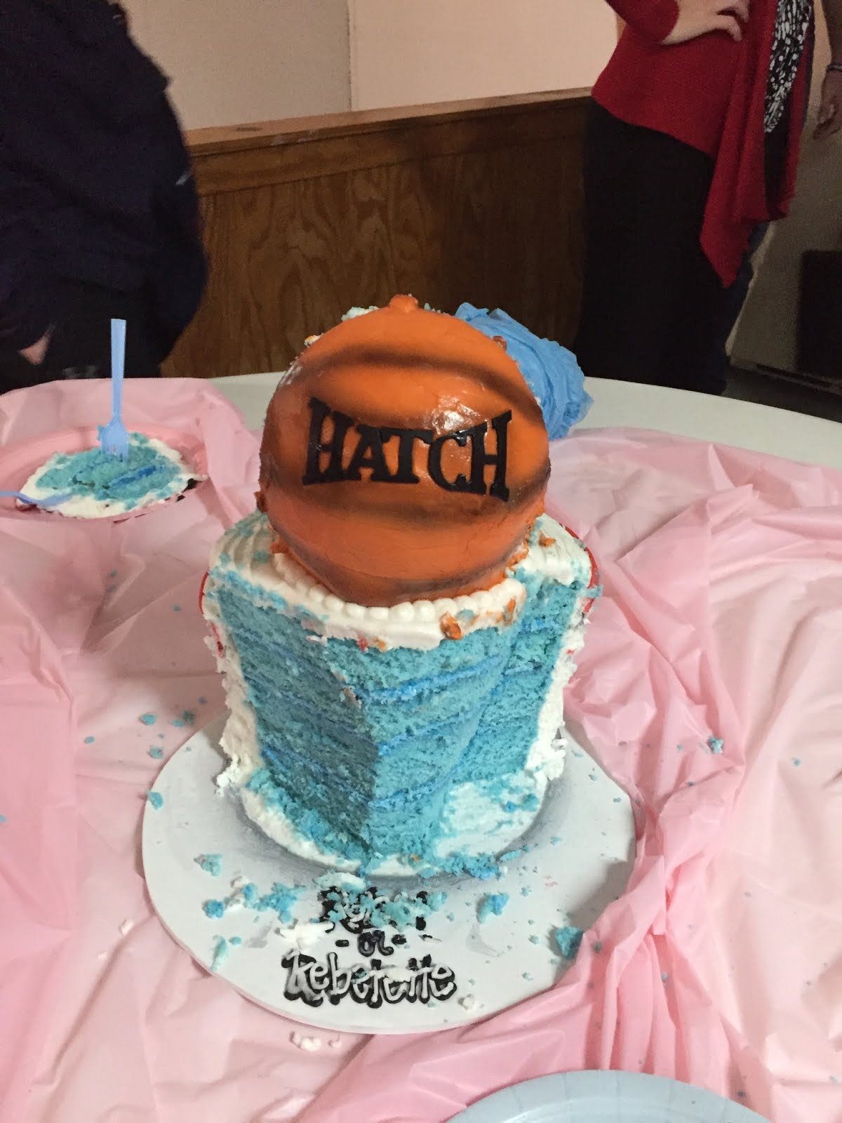 Cake from reveal party!
