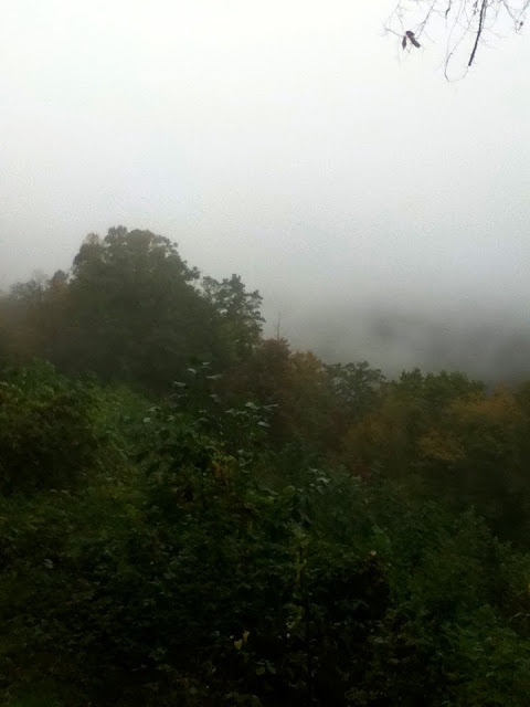 Fog in the Great Smoky Mountains