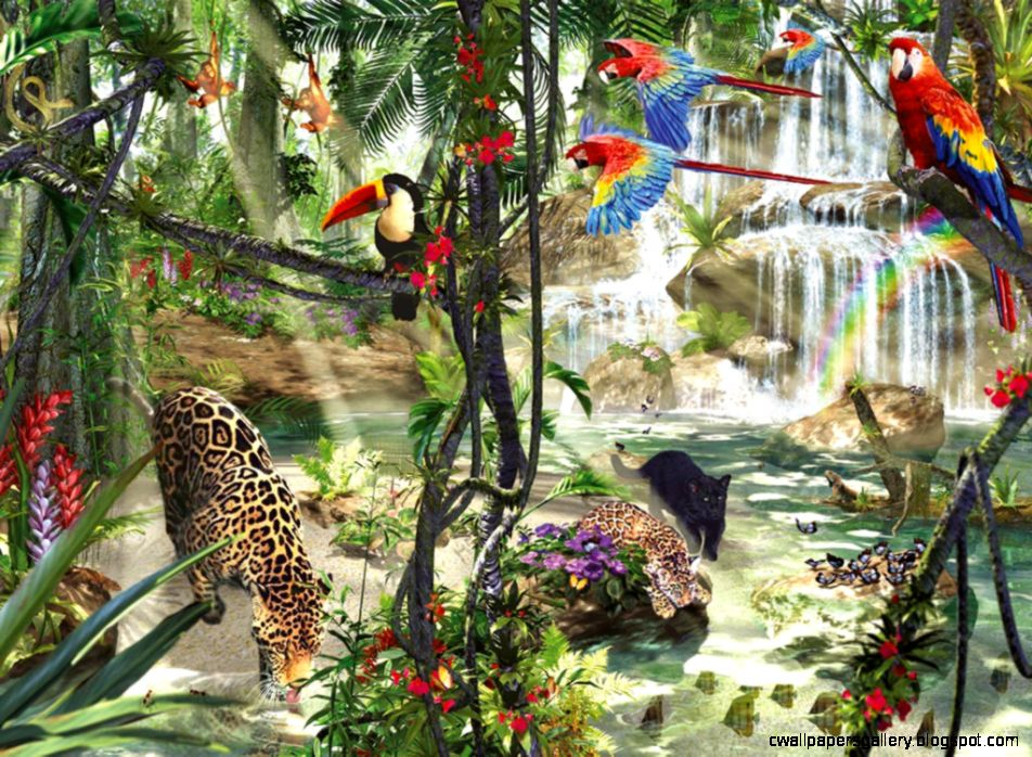 Cats Jungle Life Rainforest Birds Cats Wild Background Pictures
