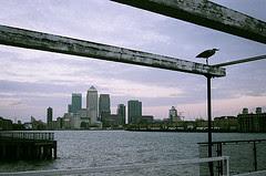 Birds Canary Wharf