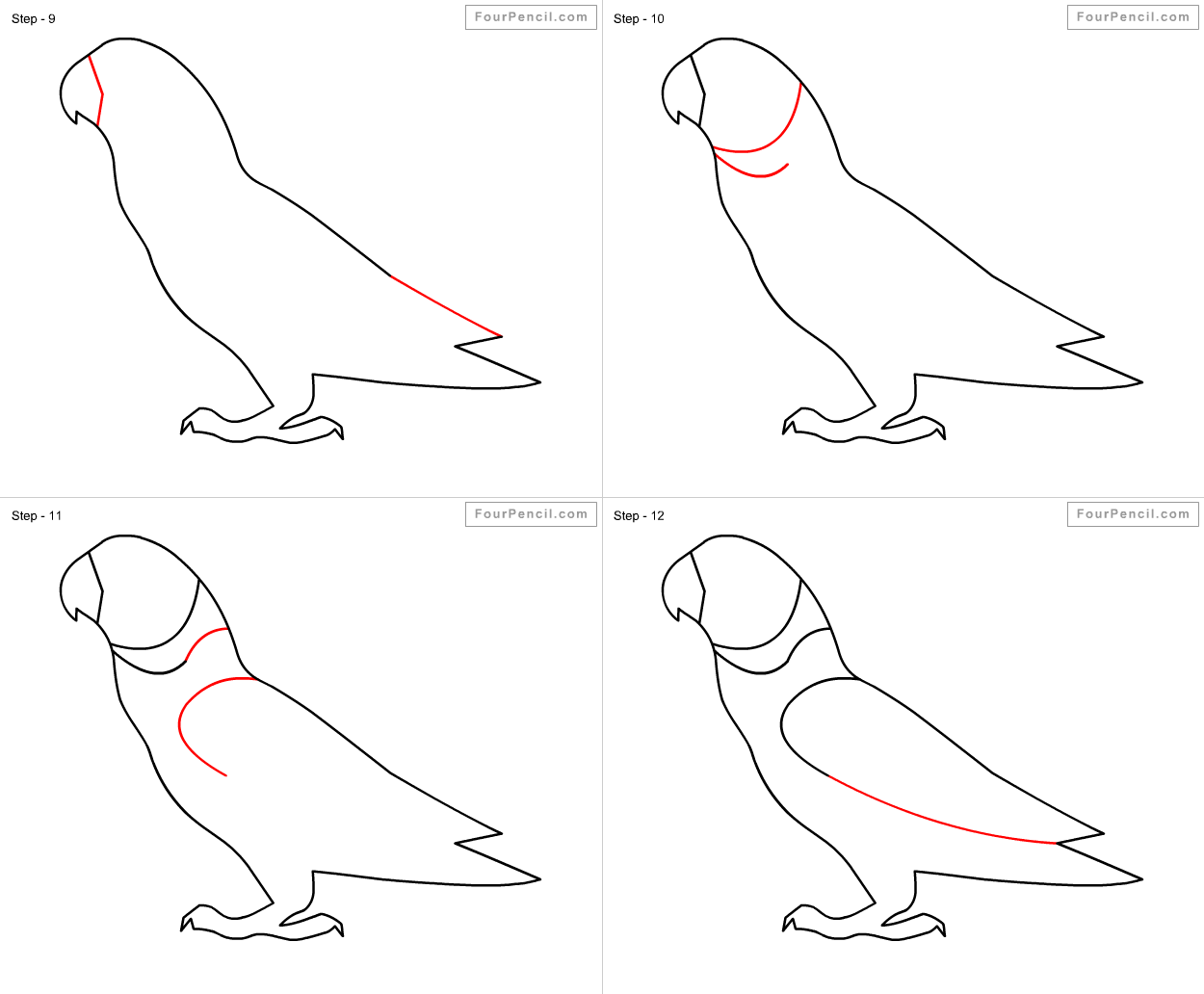 Fpencil How To Draw Parrot For Kids Step By Step