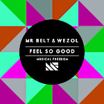 Mr Belt & Wezol - Feel so Good - Single  Cover