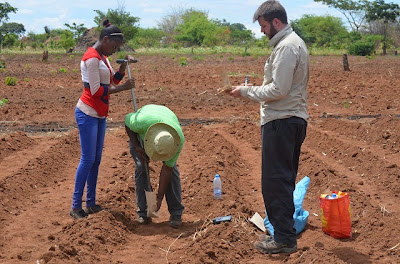 Elliott Hamilton (right) sampling with partners from CBU and ZARI
