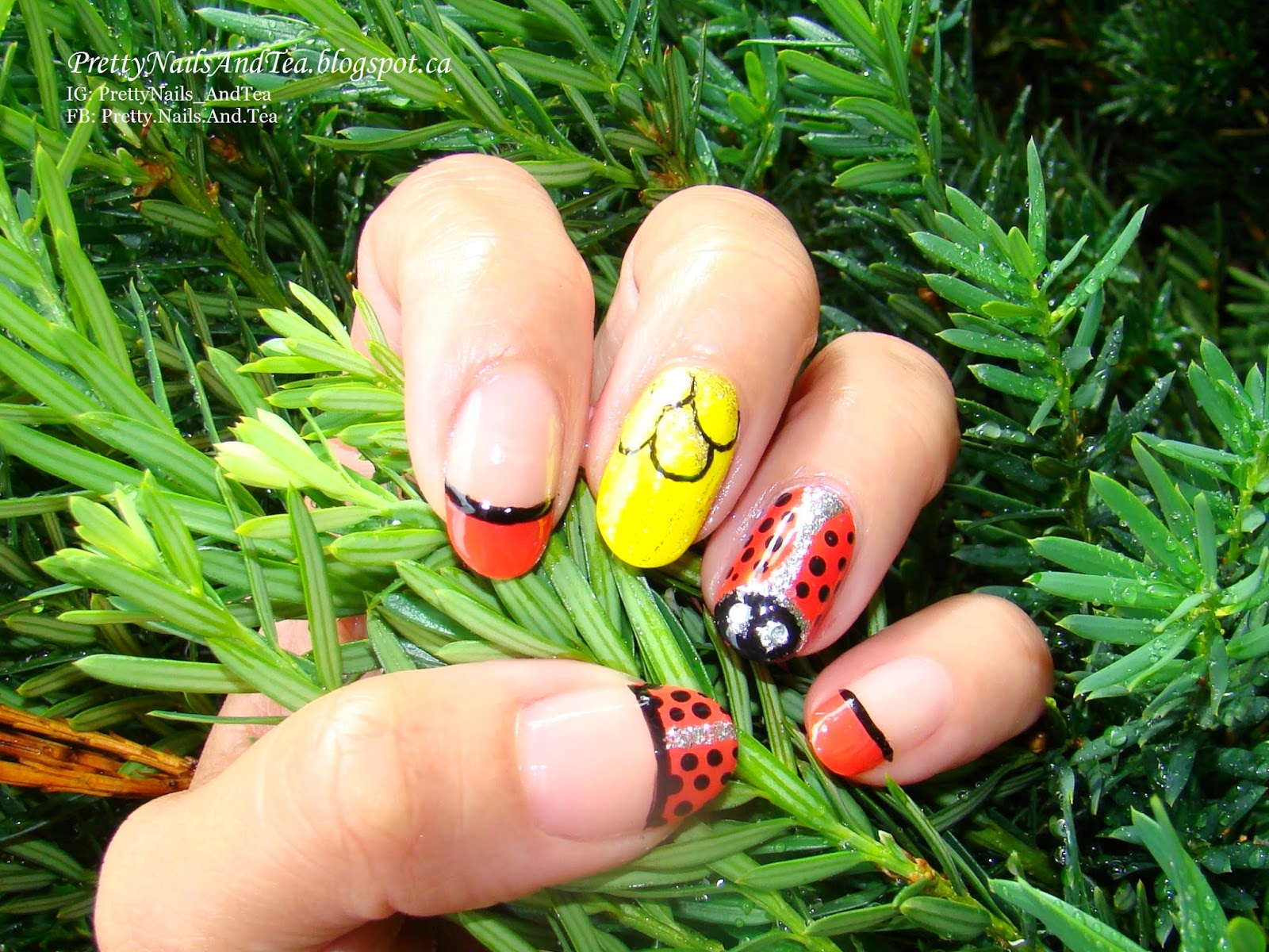 Pretty Nails and Tea: Cute, Darling Little Lady Bug | OMD2 Theme ...