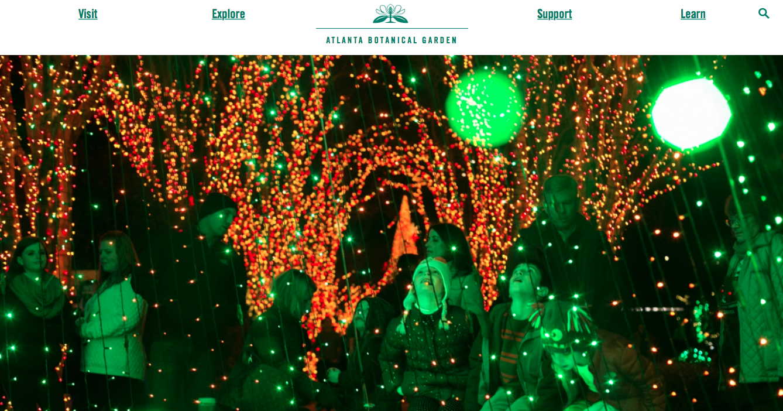 Growing with plants: BOTANIC GARDENS ARE FOR... CHRISTMAS LIGHTS ...