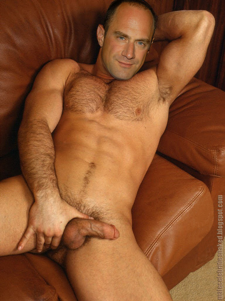 meloni1 Christopher Meloni Hot Fucking Nude Fakes
