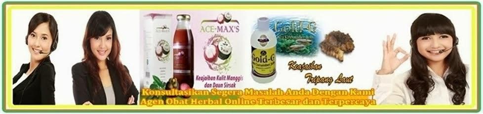 Informasi Obat Herbal Yang Ampuh dan Aman Untuk Atasi Penyakit