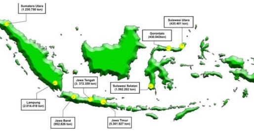 Harga Jagung BNS Indonesia Sentra Produksi Jagung
