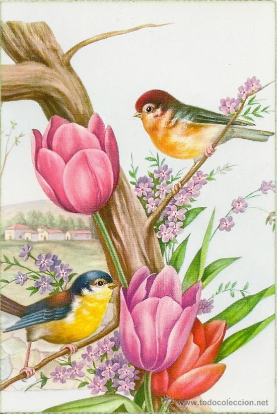 En Mi Bosque Mgico Pjaros y flores