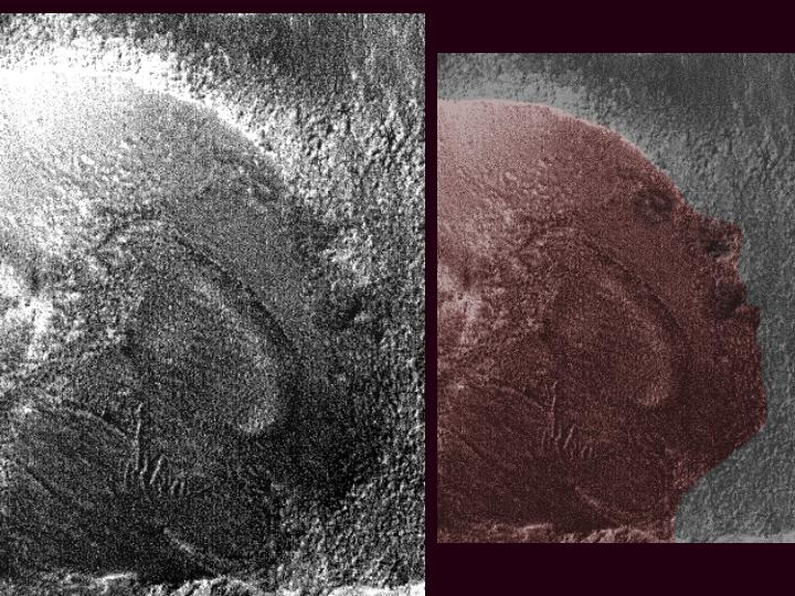 moon face on mars - photo #24