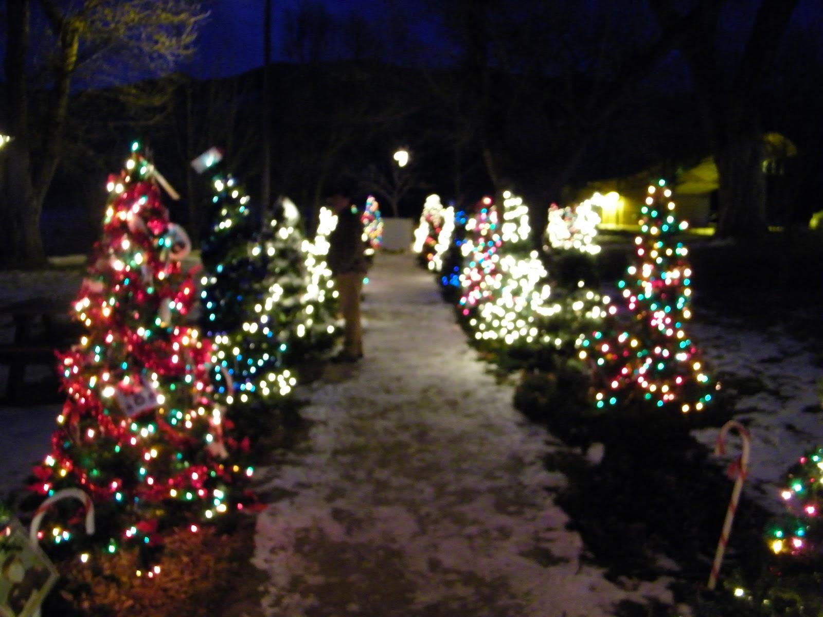 a Paisley Sunflower: Holiday Park & Christmas Tree Mountain