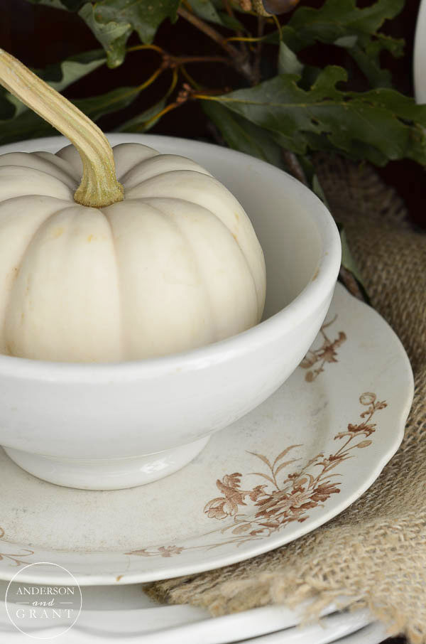 Easy fall decorating idea....add a pumpkin to an ironstone bowl.  |  www.andersonandgrant.com