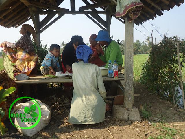 Makan bersama keluarga disaung sawah, Subang