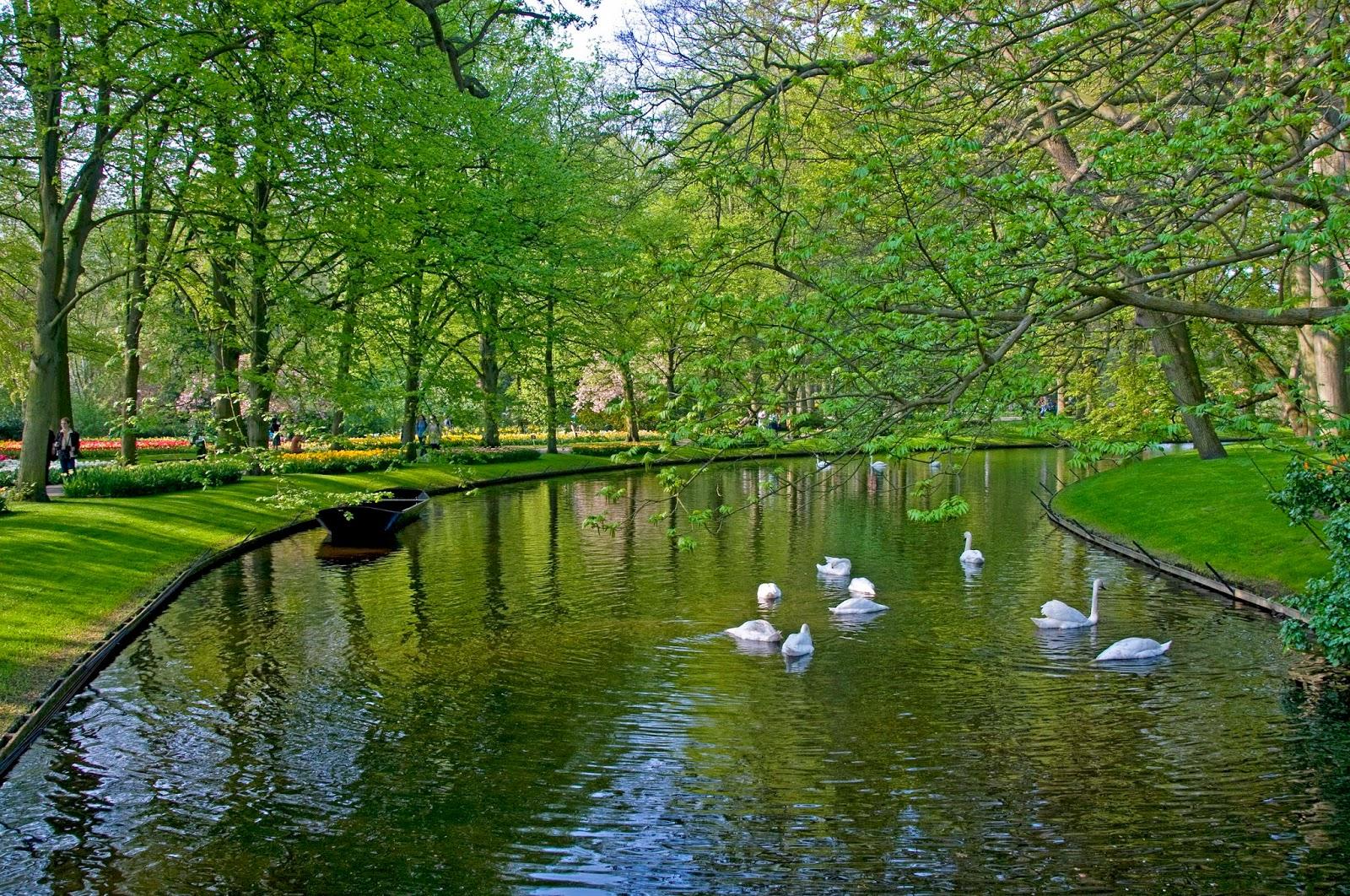 Pinceladas actuales keukenhof el parque floral mas visitado - Jardines de tulipanes en holanda ...