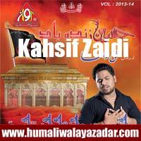 http://ishqehaider.blogspot.com/2013/11/kahsif-zaidi-nohay-2014.html