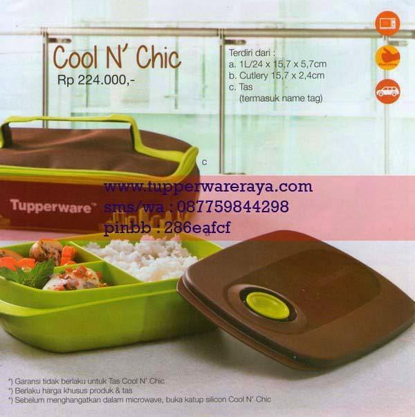 Katalog Tupperware Promo Januari 2015 Cool N Chic