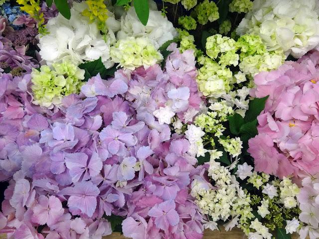 花,池袋駅〈著作権フリー無料画像〉Free Stock Photos