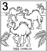 Atividades com Numerais. Três camelos