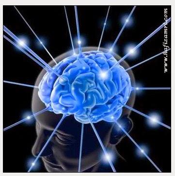ilustrasi gambar otak