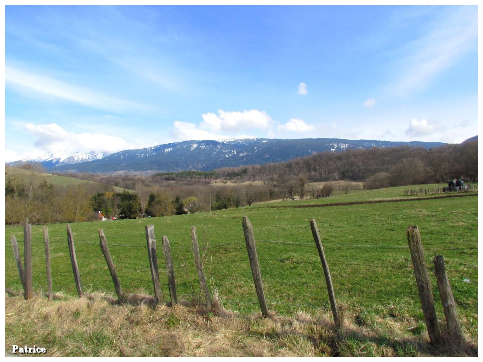 Blog photos de patrice promenade campagne de bri et angonnes - Les 4 pieds plan de campagne ...