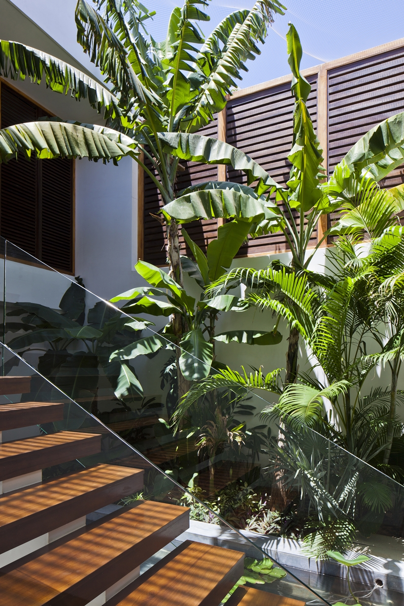 Vegetation by the stairs