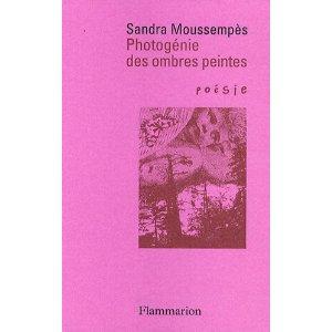 Photogénie des ombres peintes (Poésie/Flammarion 2009, Prix Hercule de Paris), troisième réédition