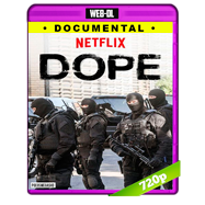 Dope (2017) Temporada 1 Completa WEB-DL 720p Audio Dual Latino-Ingles
