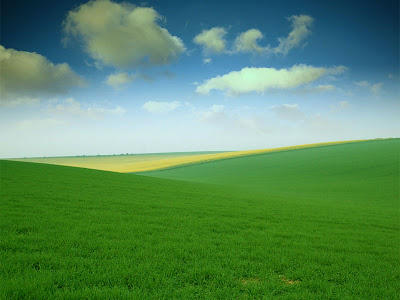 Best Animated Wallpapers For 2012