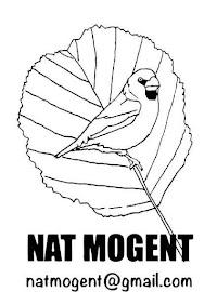 Naturalistes del Mogent
