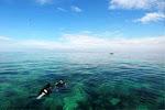 Menyelami Keindahan Pesona Bawah Laut Bumi Tanadoag