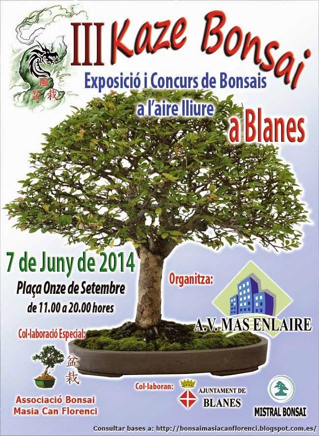 CONCURSO BLANES 2014