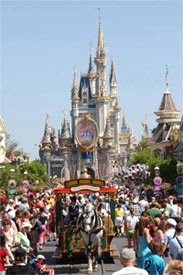 Disney's Magic Kingdom Theme Park