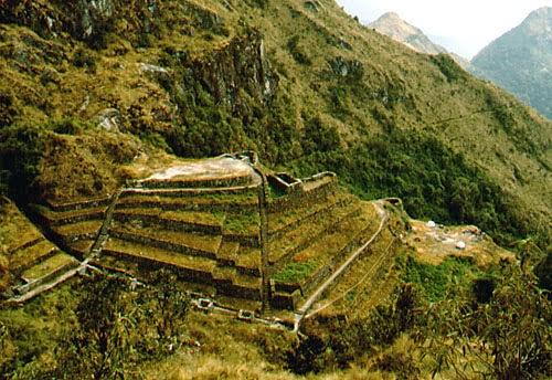 Sitio Arqueologico de Wiñaywayna