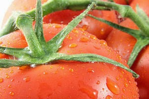 How to Grow Tomatoes in Old Tires