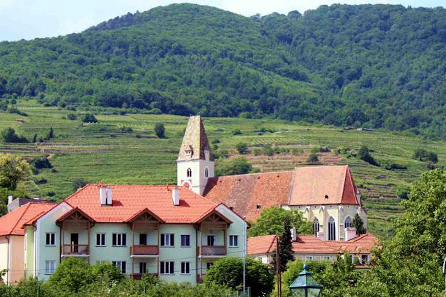 Weinterrassen in der Wachau © Copyright Monika Fuchs, TravelWorldOnline