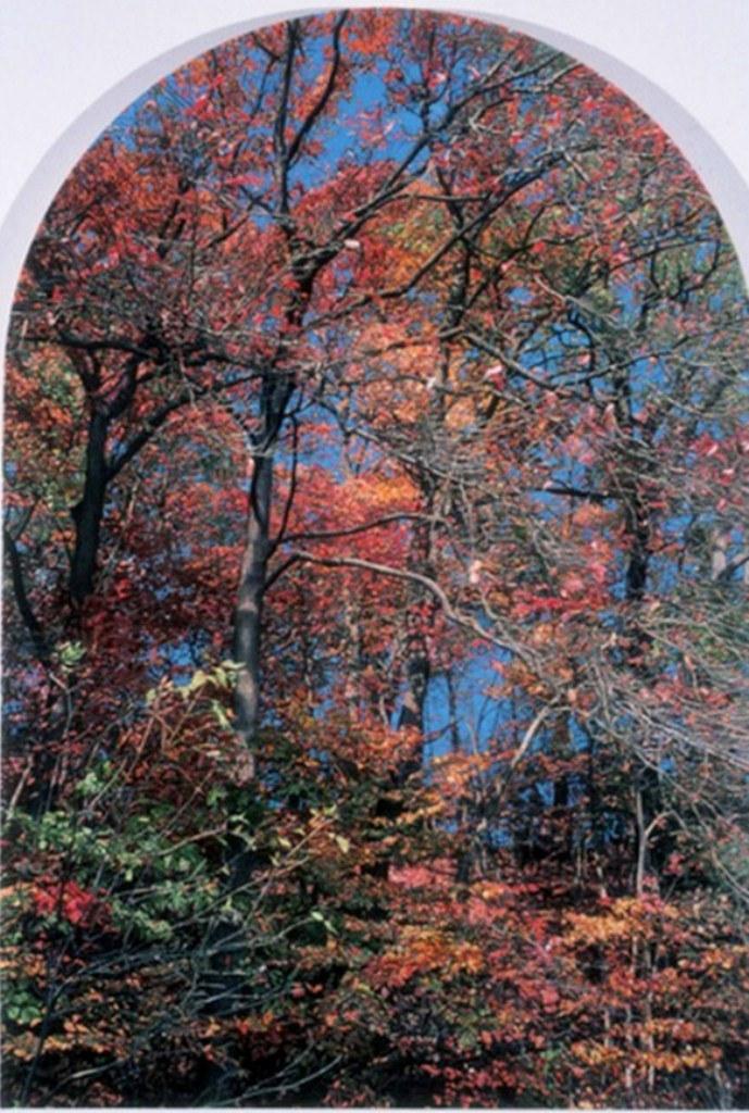 Im genes arte pinturas cuadros muy bonitos de paisajes - Cuadros muy bonitos ...