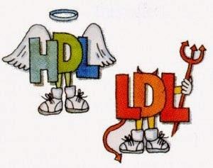 kolesterol, HDL, LDL