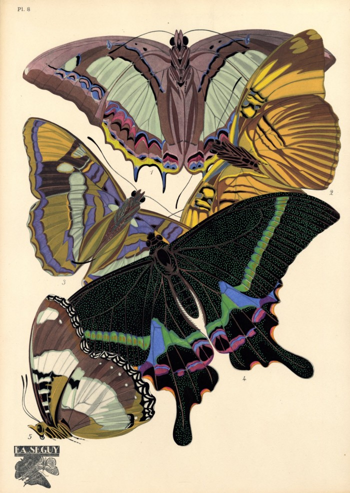 Librarian tells all vintage scientific illustrations for Art deco illustration