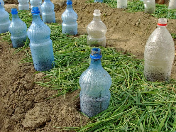Булыжники и пластиковые бутылки, оказывается, тоже могут быть эффективными помощниками в этом деле