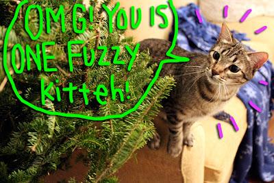 cat-christmas-tree-02