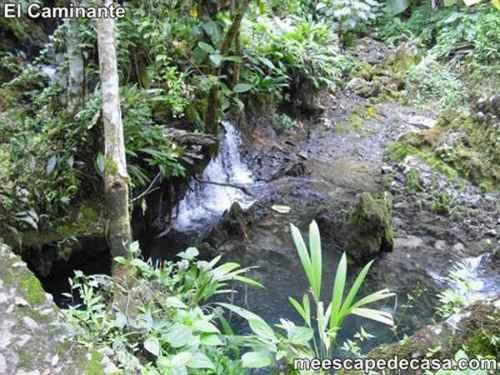 Curso de agua en el Centro Turístico Naciente del Río Tioyacu (Rioja, Perú)