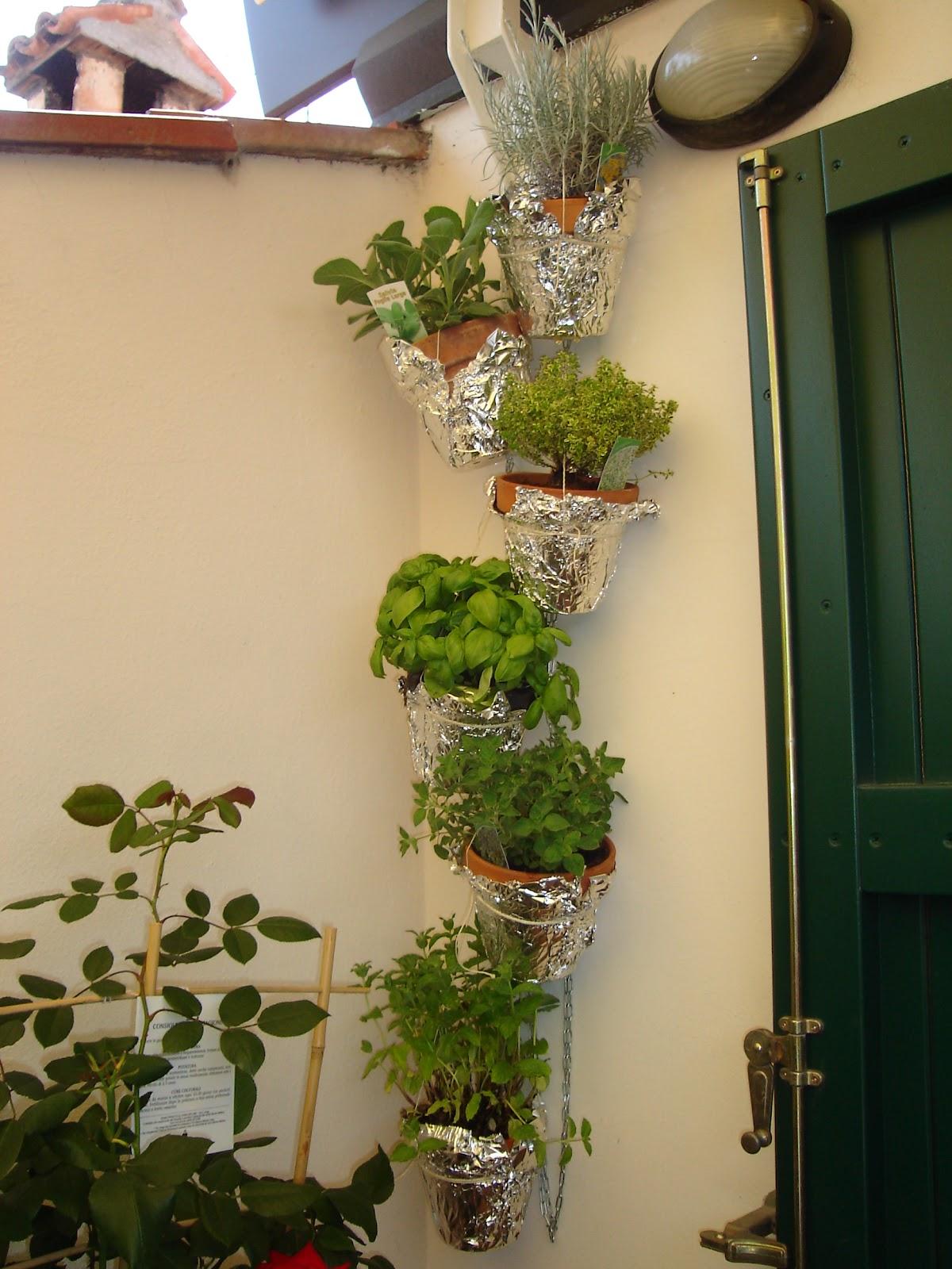 Piante Aromatiche Terrazzo : Aria di montagna piante aromatiche in terrazza