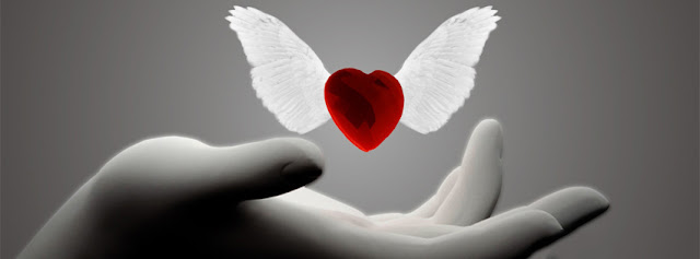 Red Heart With White Wings