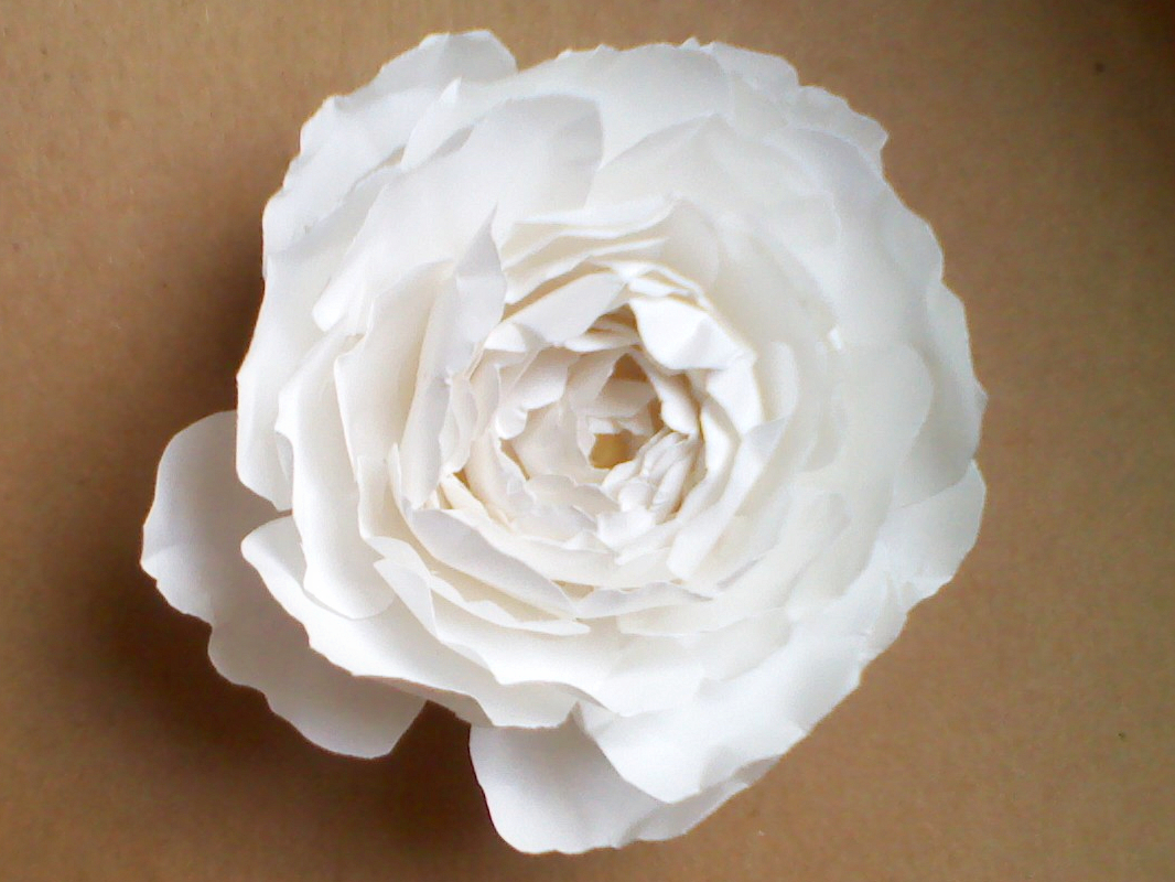 Omg my diy wedding easy paper flower tutorial easy paper flower tutorial mightylinksfo