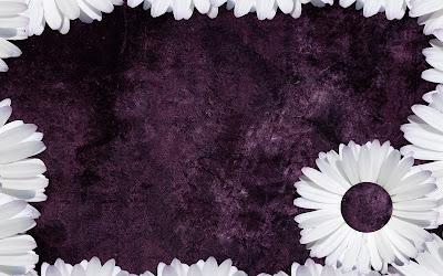 Purple Daisy Tumblr Backgrounds.jpg