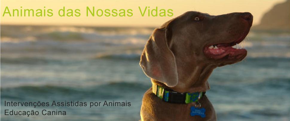 AdNV - Animais das Nossas Vidas