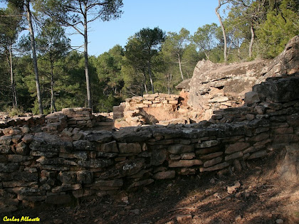 Runes de Can Garrigosa. Autor: Carlos Albacete