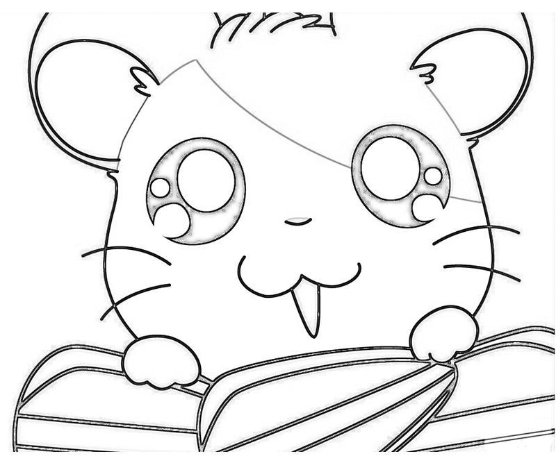 hamtaro-ham-hams-unite-hamtaro-seeking-coloring-pages