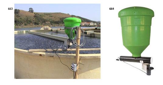 Instalaciones y equipos de estanques para peces for Comida para peces de estanque